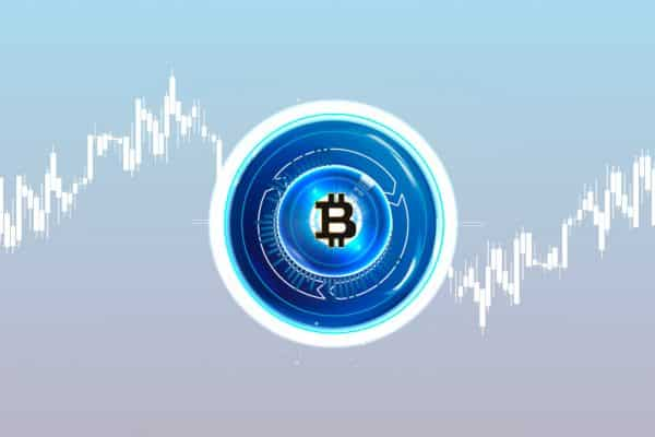 Key Dynamics to Bitcoin Price Fluctuations